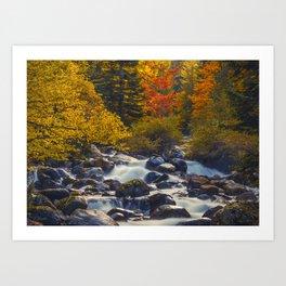 Autumn River II Art Print