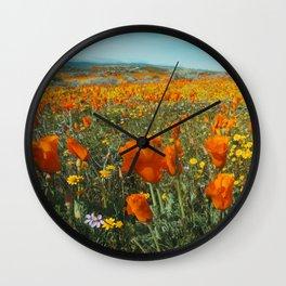California Wildflower Poppy Superbloom Wall Clock