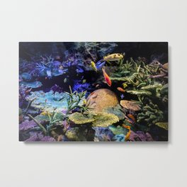 Brain Coral and Bright Colours Metal Print