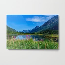 God's Country 4129 - Alaska Metal Print