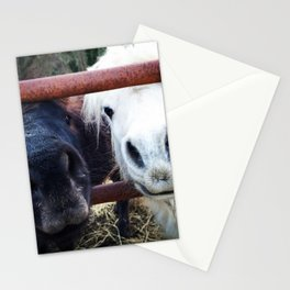 Pony Noses Stationery Cards