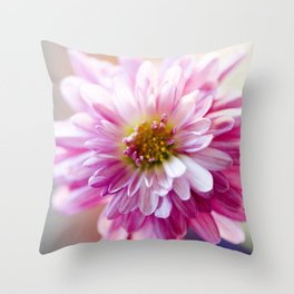 Padre Cerise Belgian Mum Alternate Focus Throw Pillow