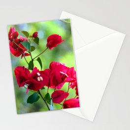 Ruby Blooms Stationery Cards
