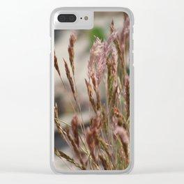 Closeup Wild Grass and Purple Verbena at Coachella Wildlife Preserve Clear iPhone Case