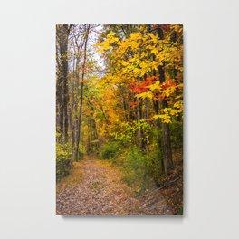 Nixon Park Autumn Metal Print