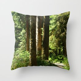 Walkway in Hoh Rainforest Throw Pillow