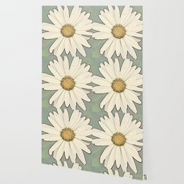 Flower | Flowers | Big White Daisy Wallpaper