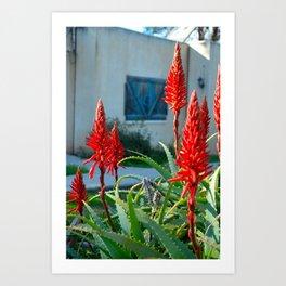 Red Plant Art Print