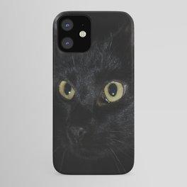 Black Cat Looking Away Photo iPhone Case