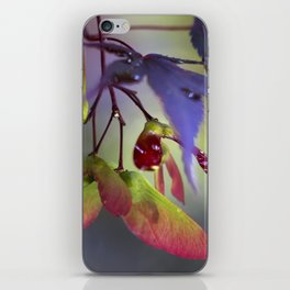 Japanese Maple Seeds iPhone Skin