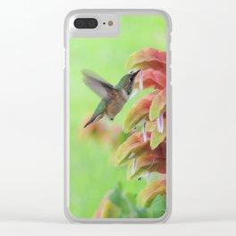 Hummingbird in Justicia Clear iPhone Case