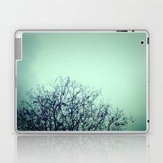 Bare Laptop & iPad Skin