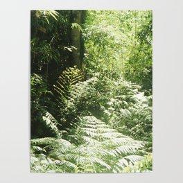 Iguazú Dream Poster