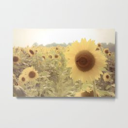 Sunflower Dreams Metal Print