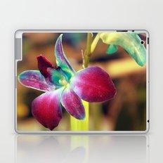 Dendrobium Orchid Laptop & iPad Skin