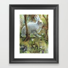 Hare Framed Art Print