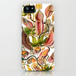Ernst Haeckel Nepenthaceae Pitcher Plant iPhone Case