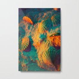 Seashells and Sand Metal Print