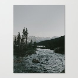 In The Stream Canvas Print