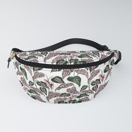 Pink and Green indoor Plant Caladium - home decor Fanny Pack