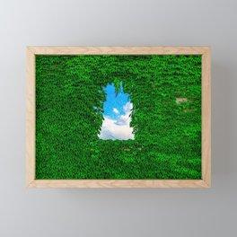 Bird's Window Framed Mini Art Print