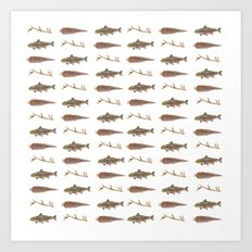 Fur Feather & Fin Art Print