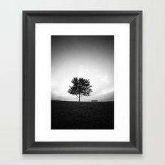 Tree and Bench Framed Art Print
