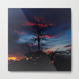 Trees On The Sunset Metal Print
