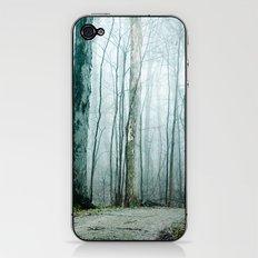 Feel the Moment Slip Away iPhone & iPod Skin