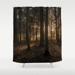 Sunrays through the trees Shower Curtain
