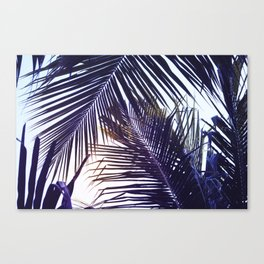 Palm Leaf in Sunset Canvas Print