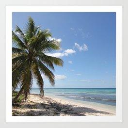 Isla Saona Caribbean Paradise Beach Art Print