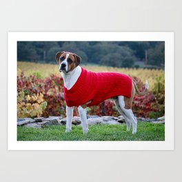 Dog in Red Sweater Art Print