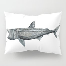 Basking shark (Cetorhinus maximus) Pillow Sham