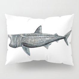 Basking shark (Cetorhinus maximus) Pillow Sham