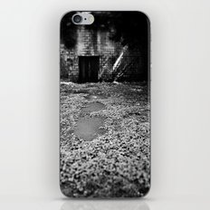 Over the Hill and through the Swamp iPhone & iPod Skin