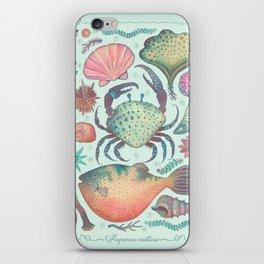 Marine Creatures II iPhone Skin