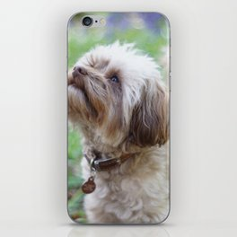 Walkies in the woods iPhone Skin