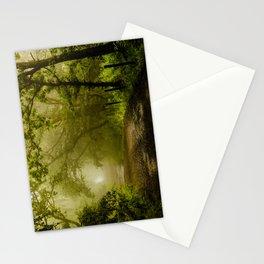 Misty Woodland Lane Stationery Cards