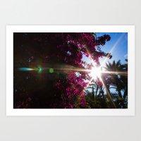 Flower Flare  Art Print