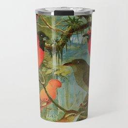 Amazonian Birds by Göldi & Emil August Belem Brazil Colorful Tropical Birds Scientific Illustration Travel Mug