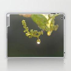 A Magical Moment Laptop & iPad Skin