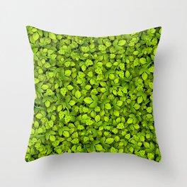 Green Hops Throw Pillow