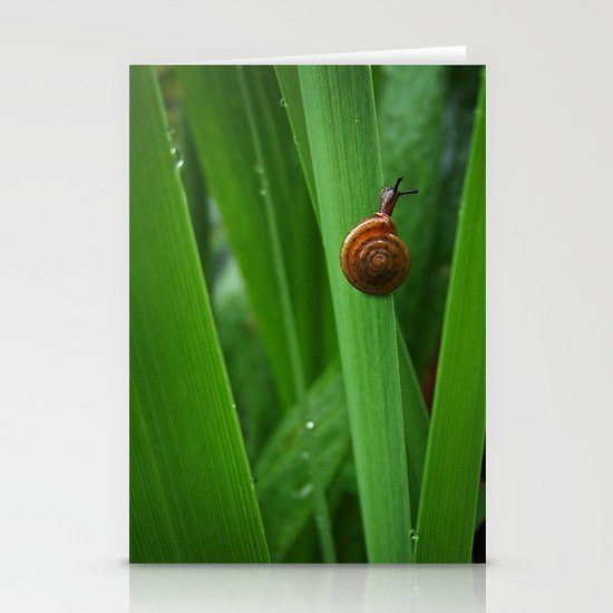 Daring Snail Stationery Cards