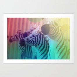Zebra Spectrum Art Print