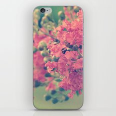 Pink Crape Myrtle Flowers iPhone & iPod Skin