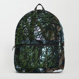 The Greenhouse IV Backpack