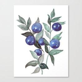 Watercolor Blueberries Canvas Print