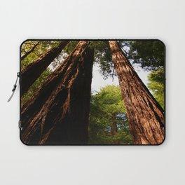 Redwood Tree Tops Laptop Sleeve