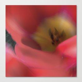 Tulips_217 Canvas Print